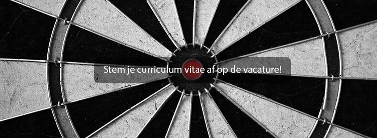 curriculum-vitae-gericht-maken